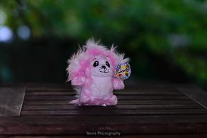 Pink Feepit